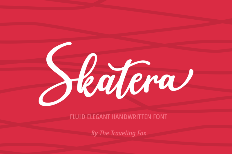skatera-skate-inspired-script