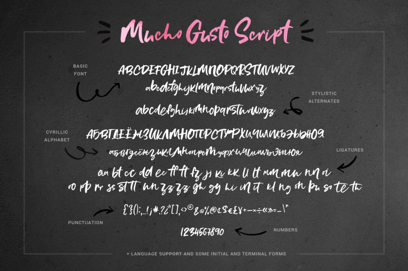mucho-gusto-font-family