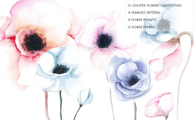 anemone-watercolor-illustration