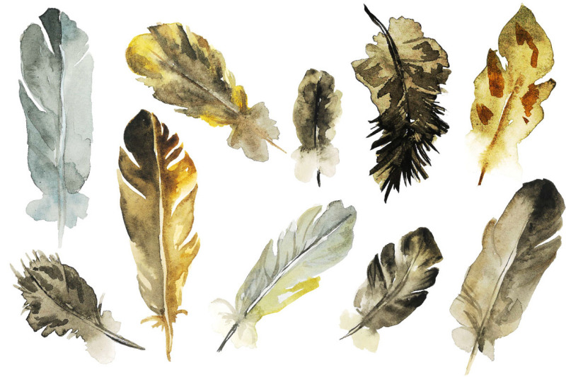 owl-and-feathers-watercolor-set