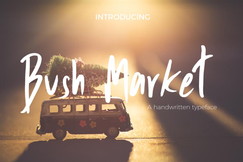 bush-market-script-font