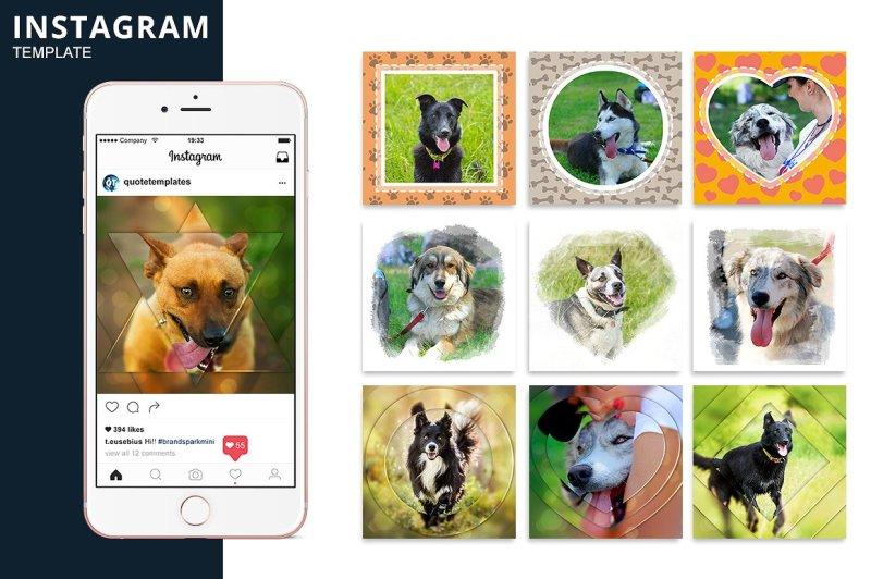 instagram-dog-template