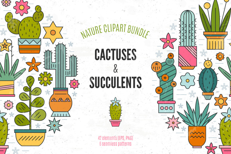 succulent-clipart-and-patterns-bundle