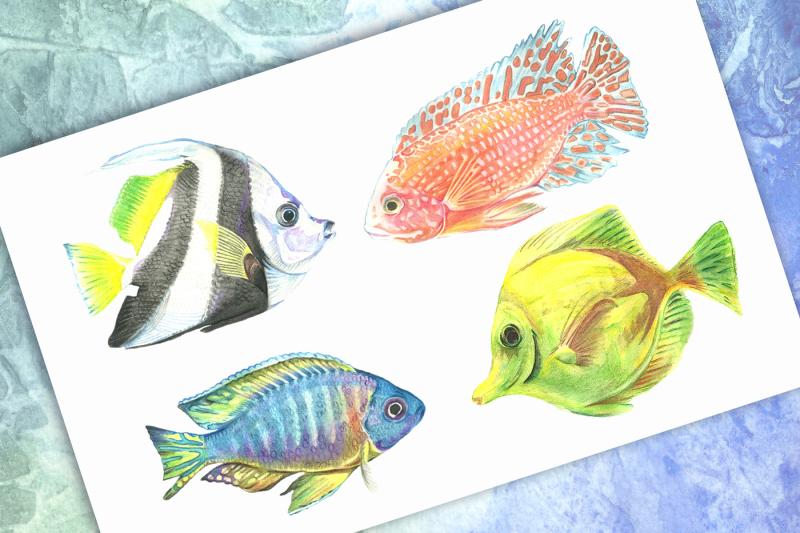 watercolor-tropical-fish-sample-free