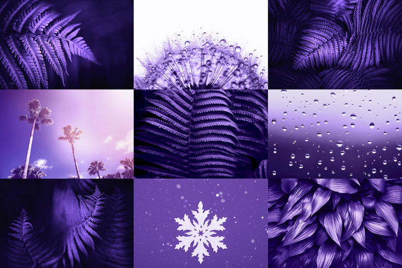 ultra-violet-photo-bundle