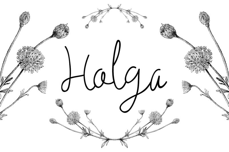 holga-script