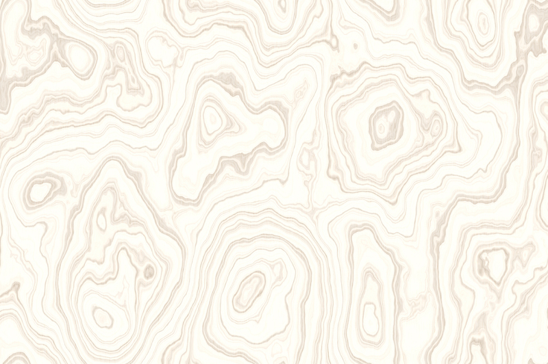15-white-wood-background-textures