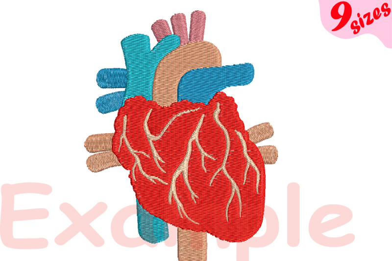 heart-anatomy-embroidery-design-machine-instant-download-commercial-use-digital-file-icon-sign-science-school-hospital-biology-medic-cancer-organs-166b