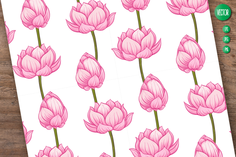 lotus-illustrations-and-patterns