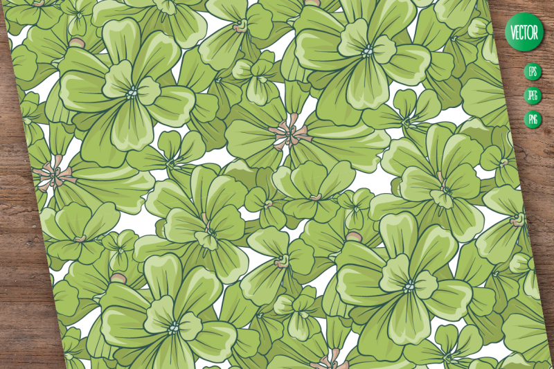 pistia-illustrations-and-patterns