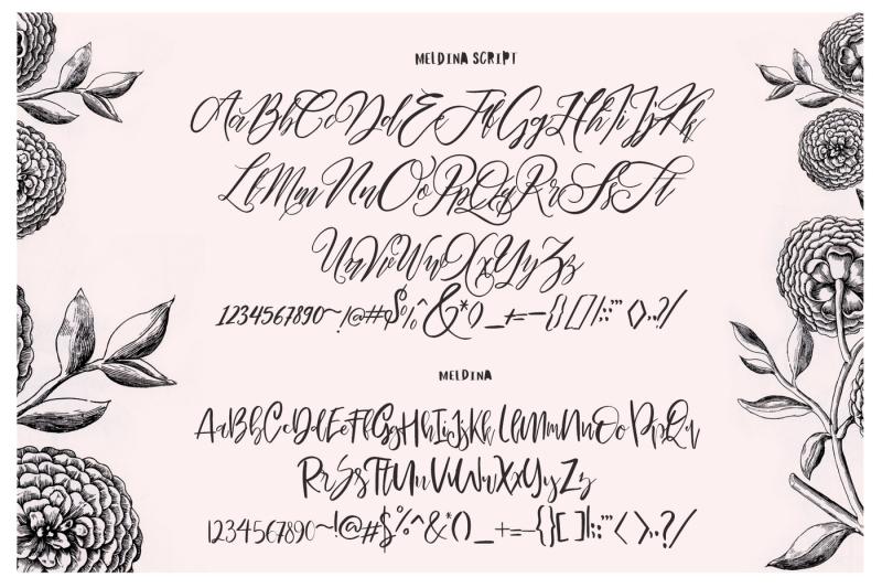maldina-feminime-4-fonts