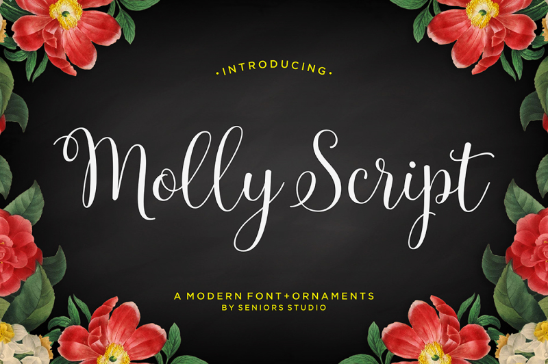 molly-script