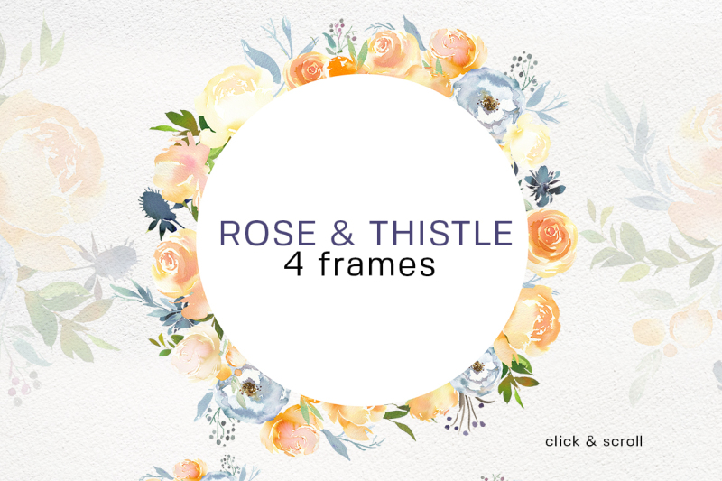 peach-roses-white-peonies-blue-thistle-watercolor-clipart-collection