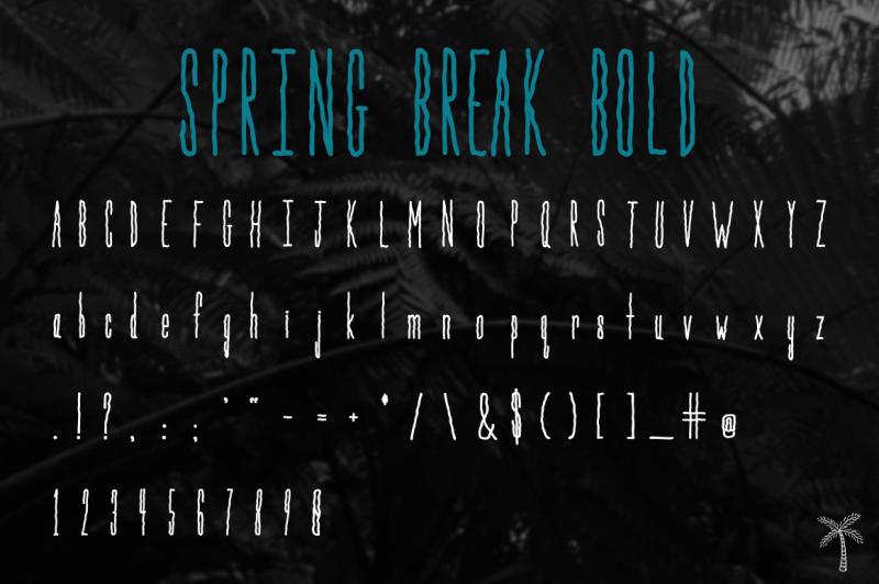 spring-break-font-bonus-graphics