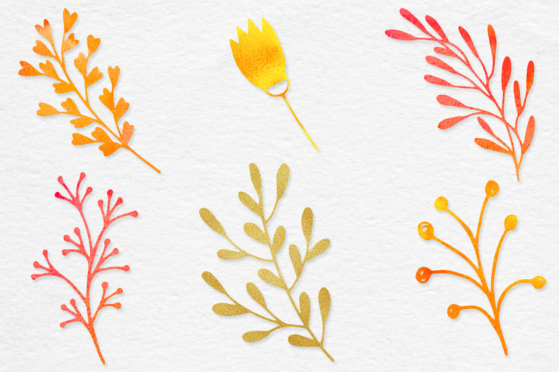 watercolor-and-gold-botanical-clipart
