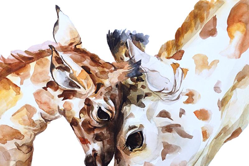 watercolor-giraffe