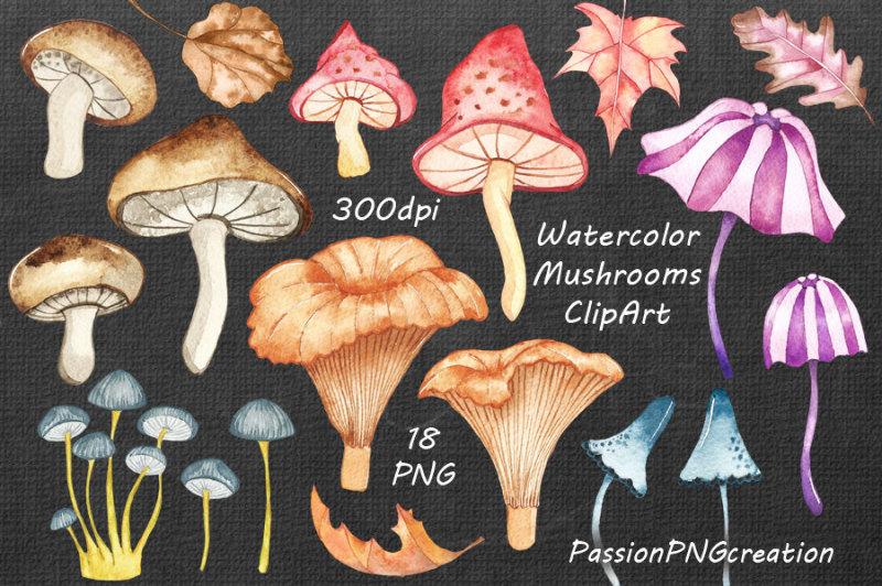 watercolor-mushrooms-clipart