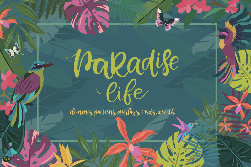 paradise-life-collection