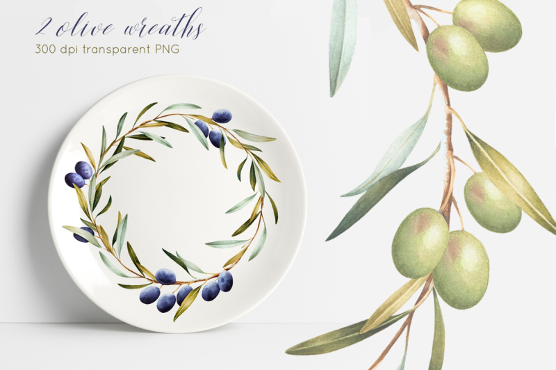olive-watercolor-collection