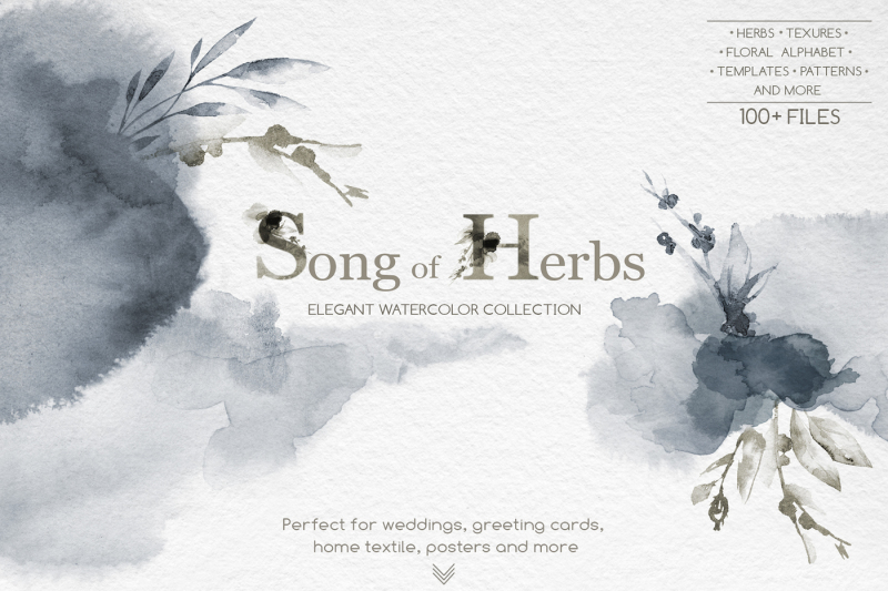 song-of-herbs-watercolor-collection