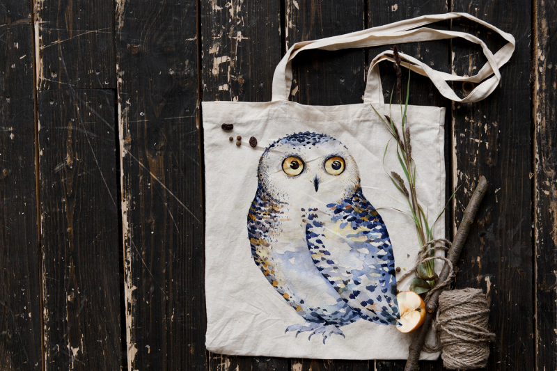 watercolor-cute-owls-hooo-collection