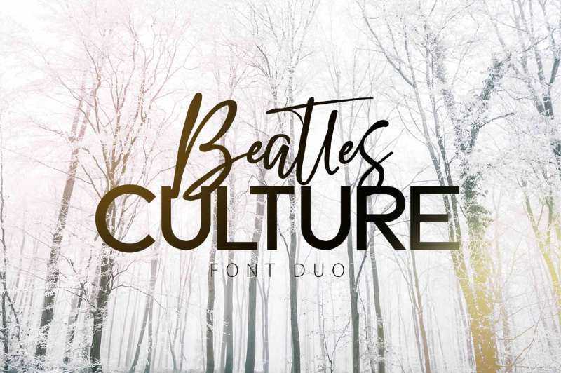 beatles-culture-font-duo