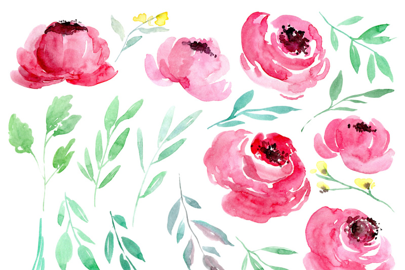 watercolor-pink-flowers-peony-roses-collection-for-1-only