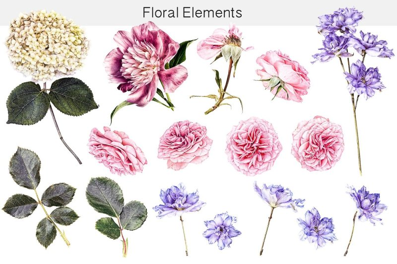 flower-studio-clipart