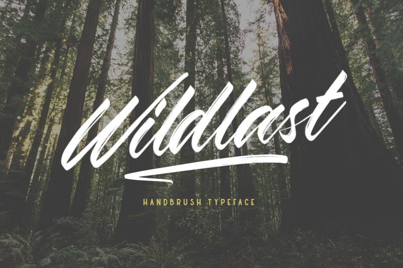 wildlast-handbrush-type
