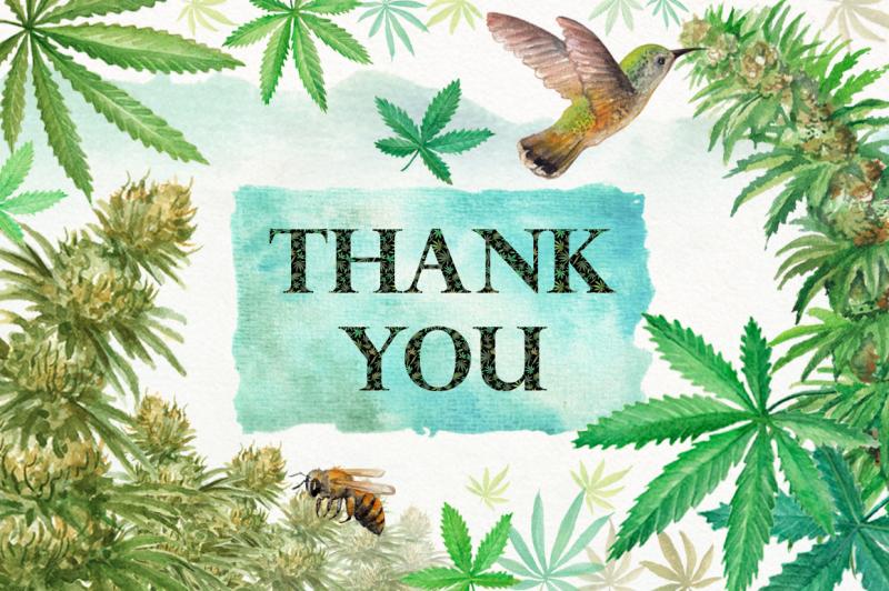 watercolor-cannabis-sativa