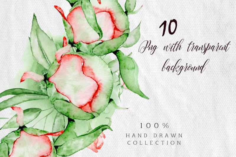 watercolor-peonies-wreath-clipart