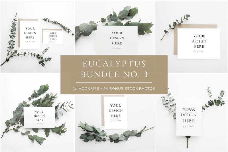 scandinavian-eucalyptus-bundle-no-3