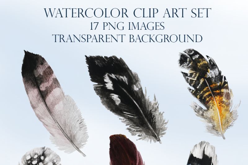 birds-and-feathers-watercolor-clip-art-set