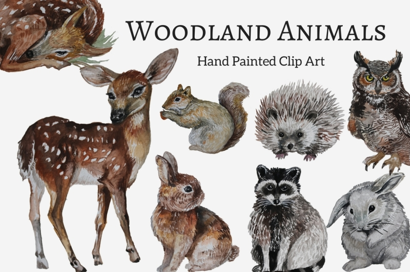 watercolor-woodland-animals