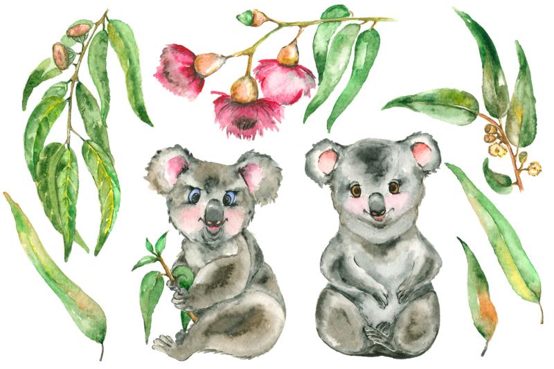watercolor-eucalyptus-and-koala-set