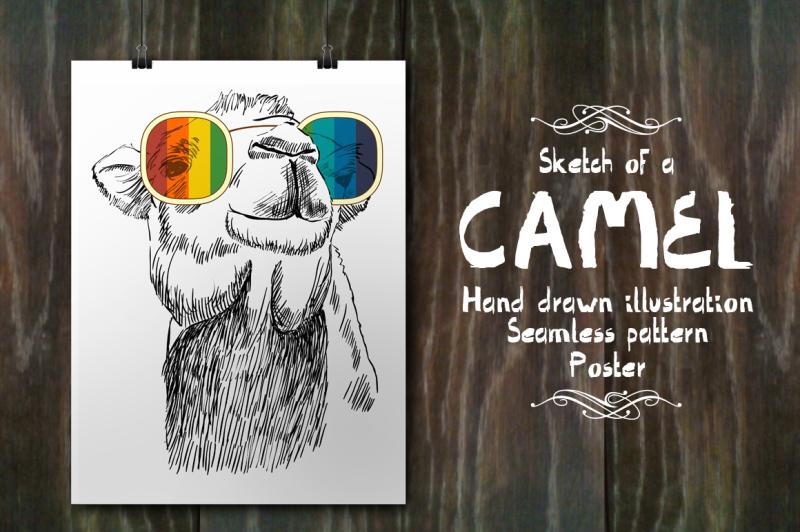 fashion-camel-set