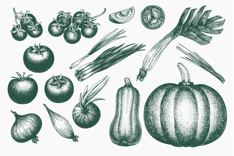 vegetable-vector-collection