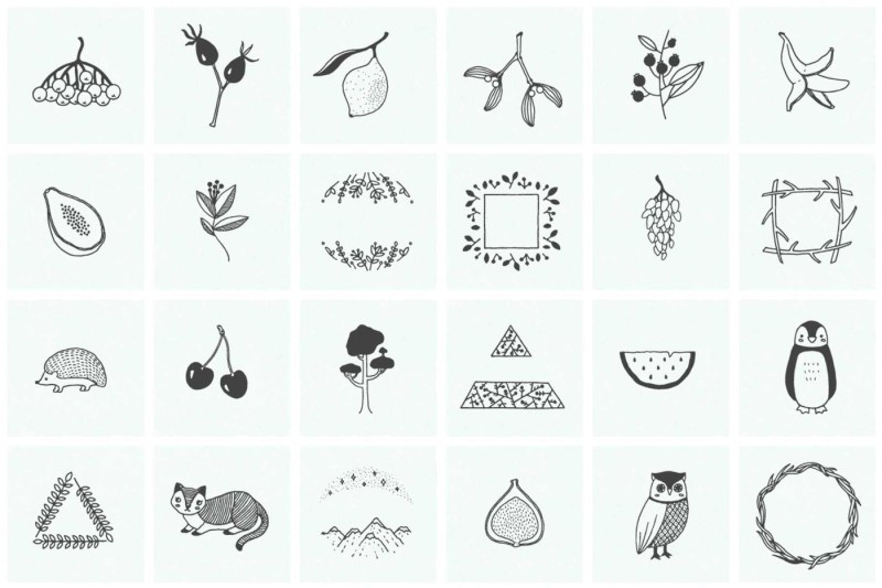 150-hand-drawn-elements-nature