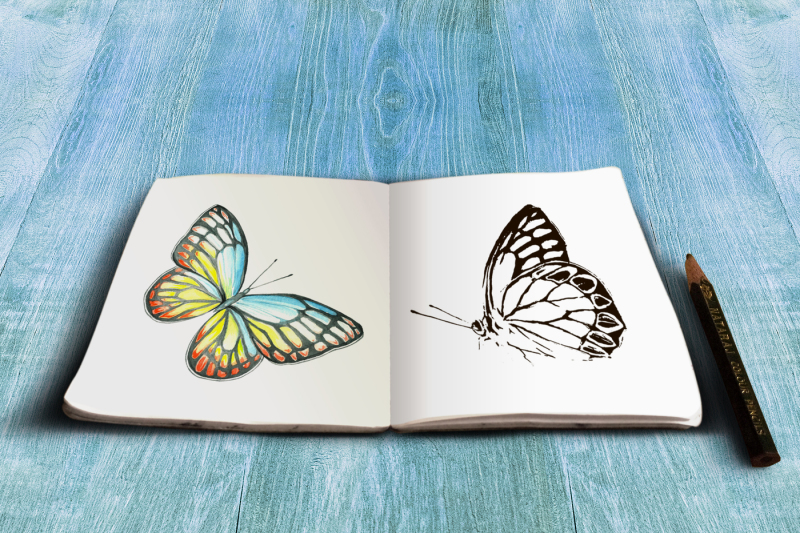 multicolored-butterfly-in-watercolor