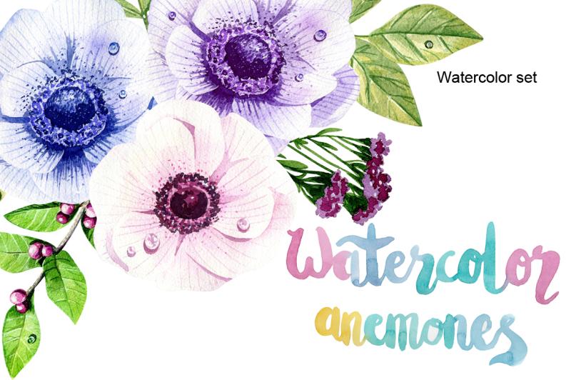 watercolor-anemones