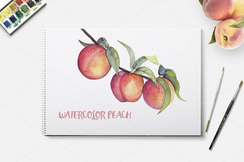 watercolor-fruit-peach
