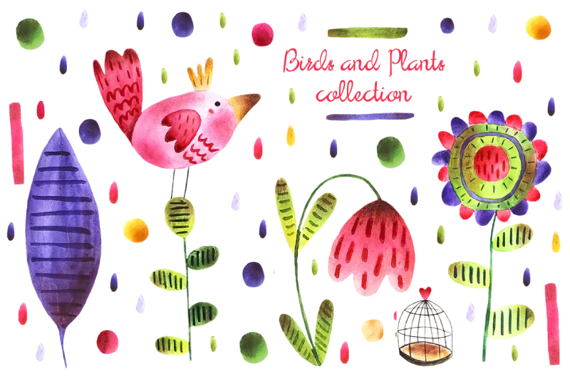 birds-and-plants-collection