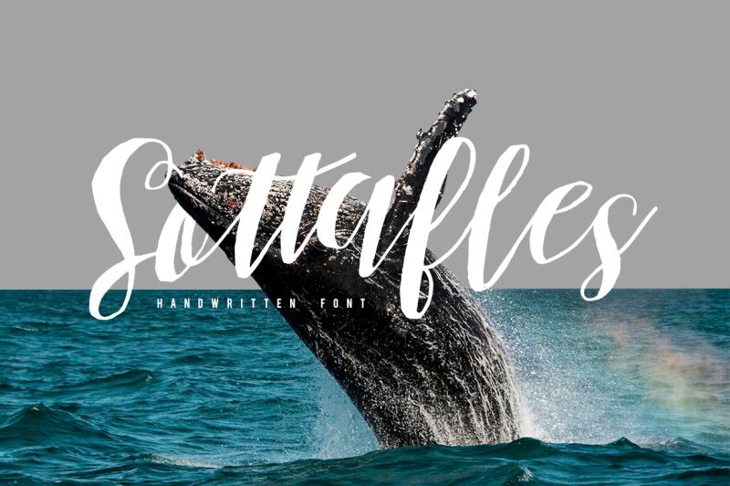 sottafles-typeface-swashes