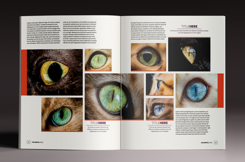 the-colorful-magazine-indesign-template