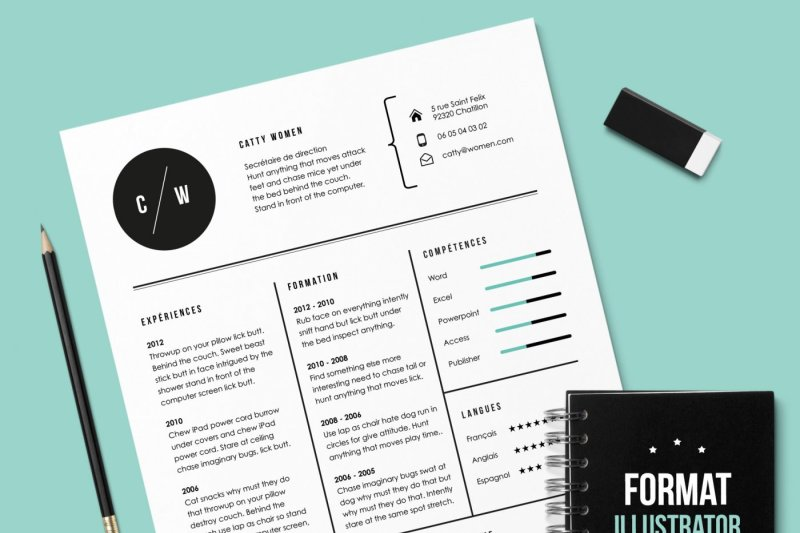 Cv Cat Resume Template Illustrator
