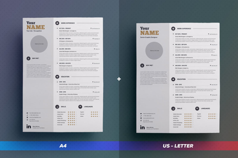 Clean Resume Cv Vol 1 Indesign Word Template