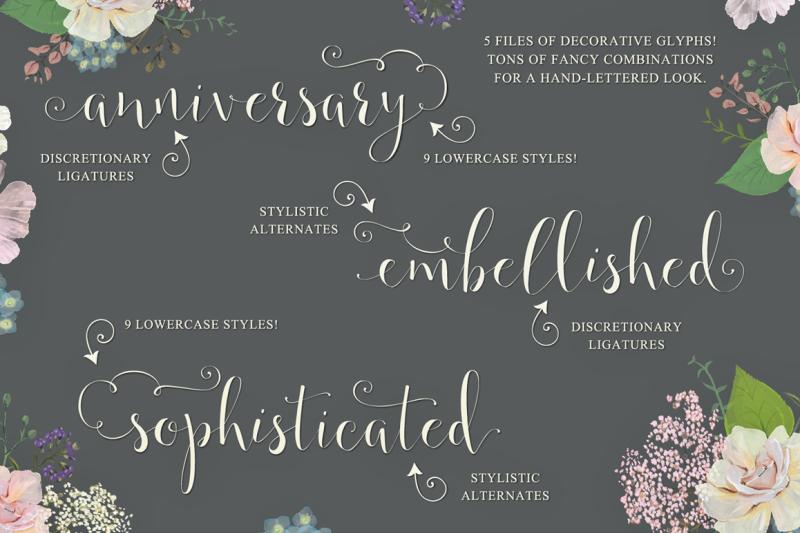 annabella-calligraphy-script