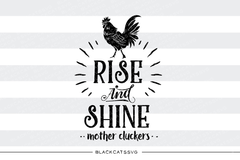 Rise And Shine Mother Cluckers Svg By Blackcatssvg