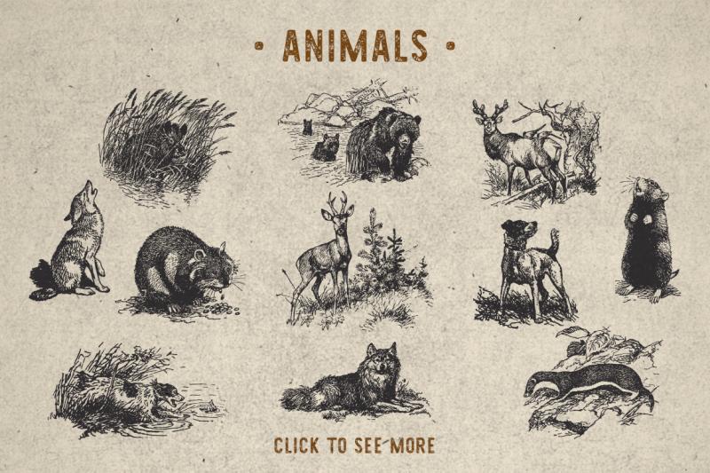 vintage-animal-pack-bonus-font