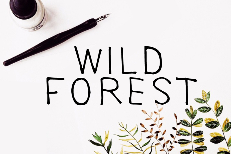 wild-forest-calligraphy-font-download-modern-digital-typeface